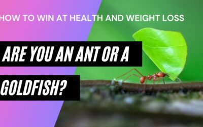 Are you an Ant or a Goldfish? How to Win at Health and Weight Loss